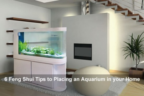 How to Place an Aquarium in a Good Feng Shui Way?