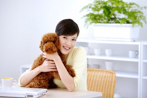 Is Keeping Pets Good Feng Shui?