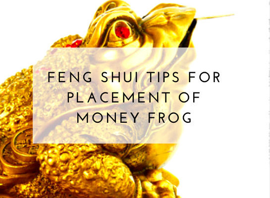 Three Legged Money Toad Feng Shui Symbol Placement To Attract Wealth Luck