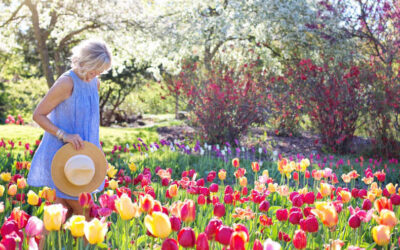 Garden Feng Shui Tips For Positive Energy